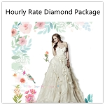 Hourly Rate-Diamond Package
