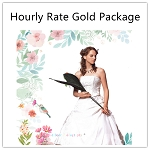 Hourly Rate-Gold Package
